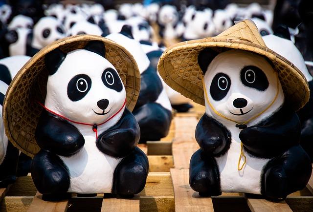 Top 15+ des idées cadeaux mignonnes pour les fans de pandas