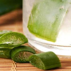 Astuce santé : les vertus des boissons à l'aloe vera… Où je trouve mes jus ?